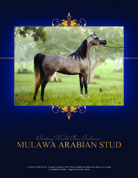Mulawa brochure scottsdale 2014 reduced