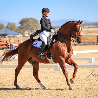 LUXOR 118 (DE) - with Kate Farrell.  2019 NSW Dressage Championships