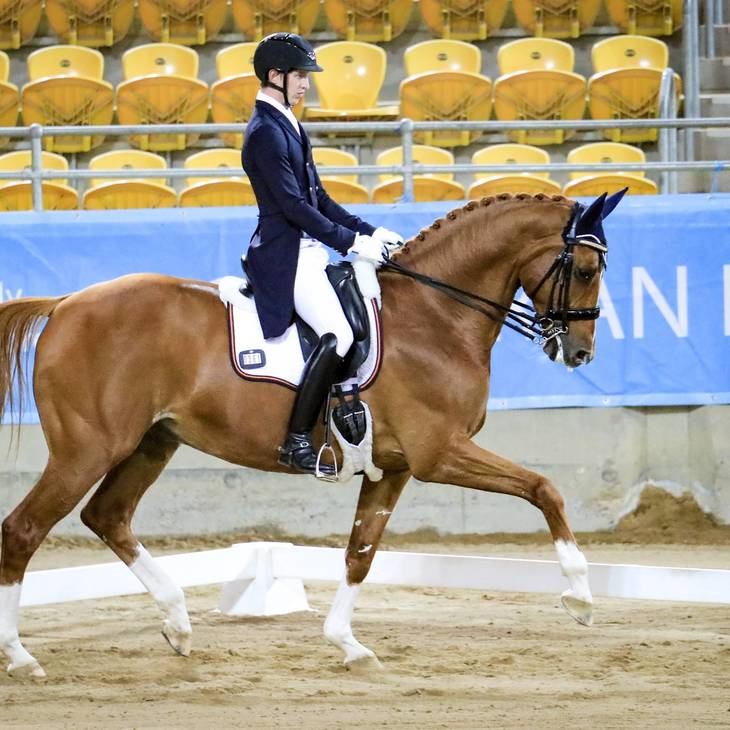 LARENSO (DK) - with Riley Alexander.  2019 NSW Dressage Championships