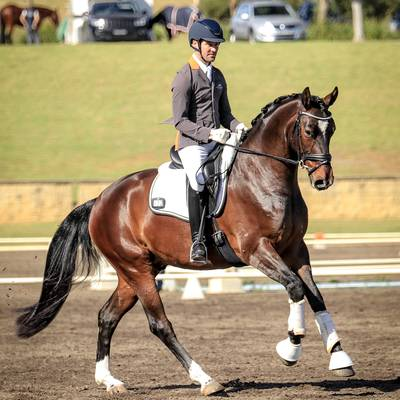 ABER FONTAINE MI with John Thompson.  Sydney Dressage Inc. October Event | FEI 4-Year-Old OC.  Photograph © Simon Scully.