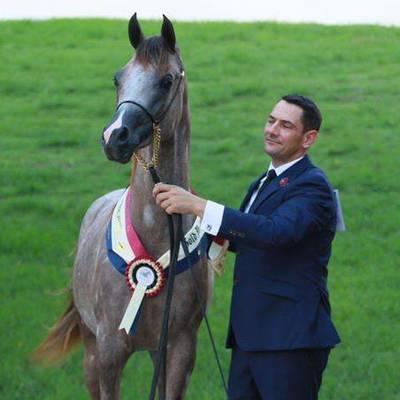 2020 Australian National Gold Champion VAIN MI