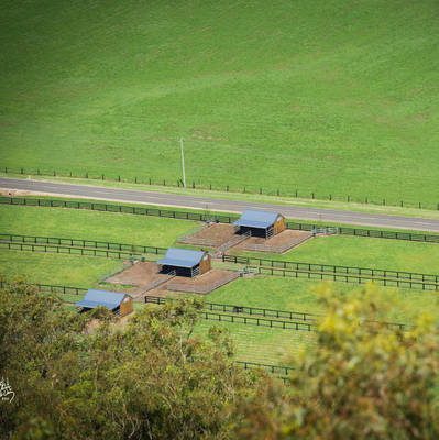 Stallion Shelters & Paddocks at Cronk Coar