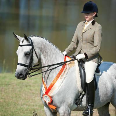 ALCHIMIA & Annette | East Coast Champion Show Hunter Mare