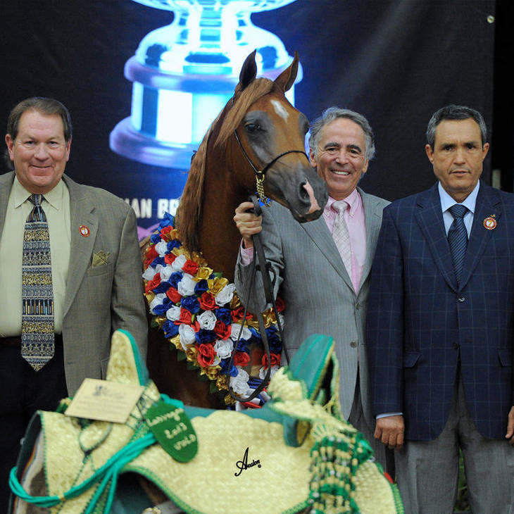 Arabian Breeders World Cup Supreme Gold Champion