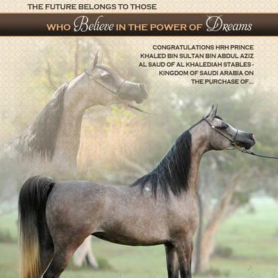 A DREAM Come True | Congratulations HRH Prince Khaled