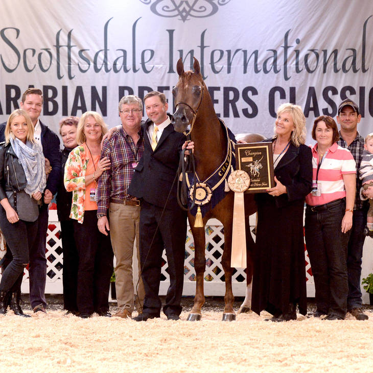 Scottsdale International Champion VANGELIS MI