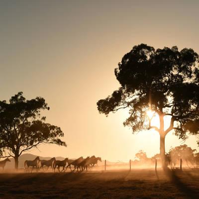 Sunrise at Cronk Coar