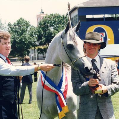 KARMAA | National Stud Show Champion Mare 1989