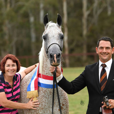 Senior Champion Mare CHANCE TO DANCE