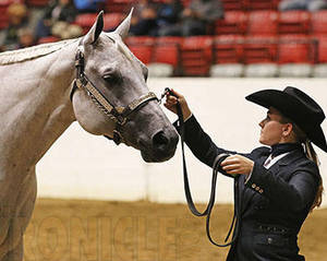 Allie Tamulewicz and Summer Hotrod Unanimous in 63-Entry Youth Performance Geldings