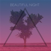 Cubbage : Beautiful Night - Single