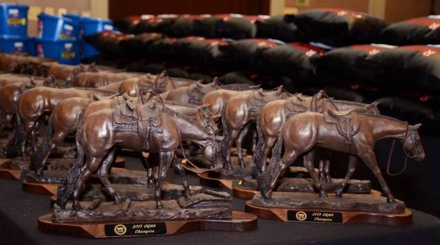 2015 Awards Banquet Gallery