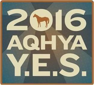 Meet the 2016 AQHYA Director Candidates