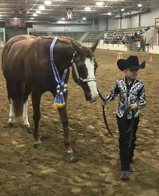 Allie Paul Wins Back-To-Back Championships in Congress Small Fry Showmanship