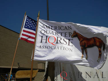 AQHA Rule-Change Proposals