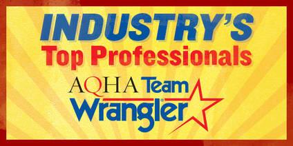 4 Ohio Professionals Named on 2017 AQHA Team Wrangler