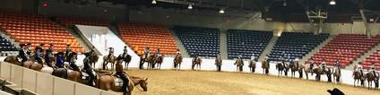 Eastern Ohio Quarter Horse Show update