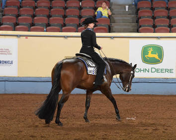 10 Reasons to Enter the 2020 Nutrena AQHA Level 1 Championships