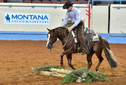 AQHA Waives 2020 World Show Qualification