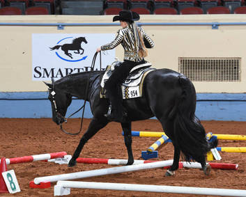 AQHYA World Championship Show On-Line Entry