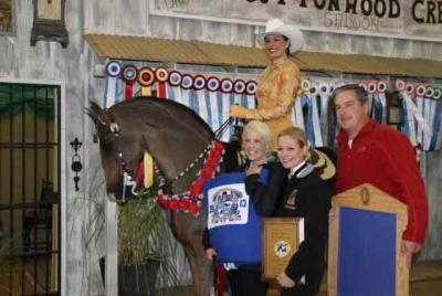 Osage wins Morgan Horse Grand Nationals in OKC