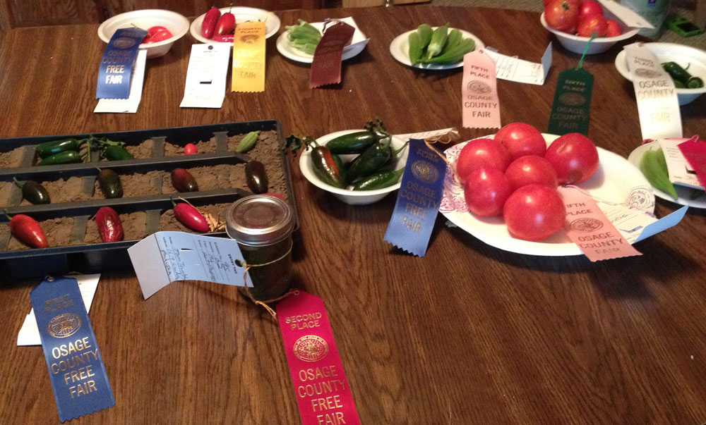 Osage 'Family Farms' wins big at Osage County Fair
