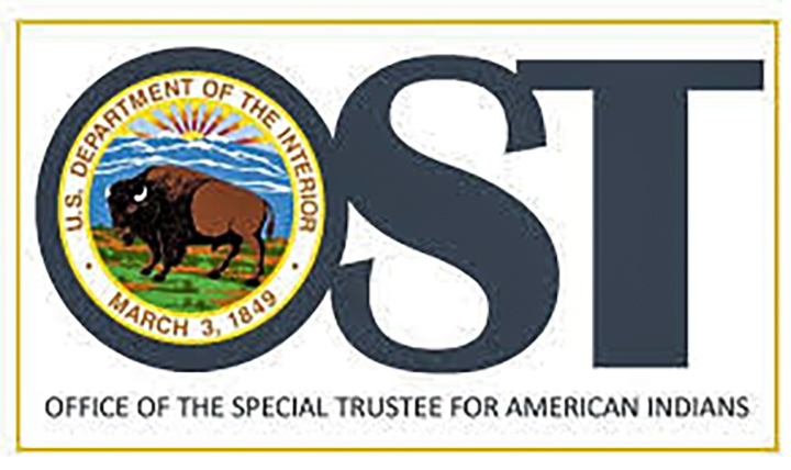 OST says shareholder checks delayed due to new accounting system
