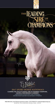 Leading Sire of Champions