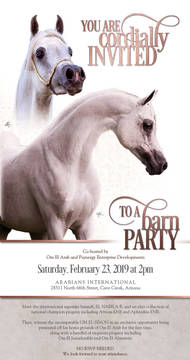 Barn Party - February 23rd, 2pm!