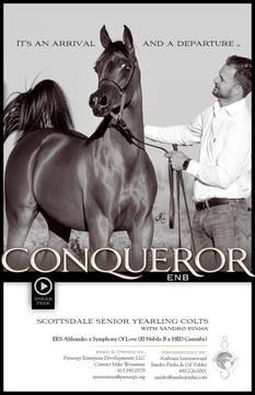 Conqueror ENB - Scottsdale 2020
