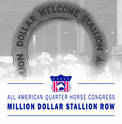 THE ALL AMERICAN  QUARTER HORSE CONGRESS REINVENTS STALLION AVENUE