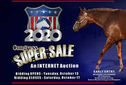 How to Bid in the Congress Online Super Sale