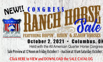 Catalog Online Now for the Congress Ranch Horse Sale