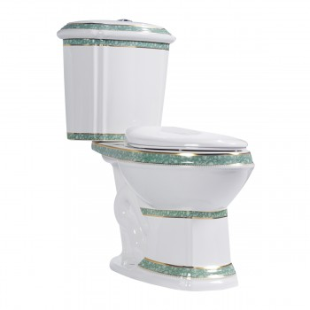 Elongated Bathroom Toilet Dual Flush Ivy Decal Seat Incl