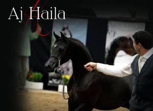 AJ Haila ( RH Triana's Full Sister)
