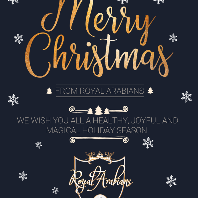 Merry Christmas and Happy Holidays to All