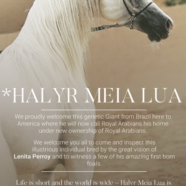 With great and pride and joy we are thrilled to announce the acquisition of *Halyr Meia Lua