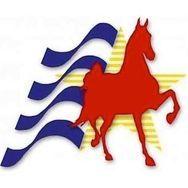 All American Horse Classic