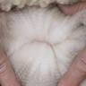 Greta's Fleece