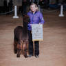 Reserve Champion at just 6 months old.