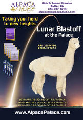 LUNAR BLAST OFF AT THE PALACE