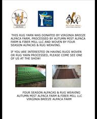 5' x 8' Rug donated by Autumn Mist/Four Seasons/VBA