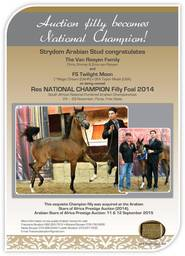 Auction filly becomes National Champion!