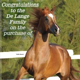Congratulations to De Lange Family