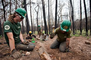Americorps volunteers are active in Bastrop State Park building trails and anti-erosion retaining walls.