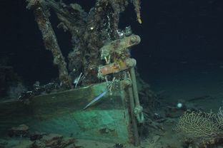 The Green Lantern Wreck, unknown wreck named for lantern artifact in Gulf of Mexico.