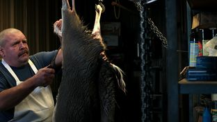 Robert Lang processes a deer in his butcher shop, Hill Country Fine Meats and Seafood, in Marble Falls.