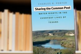 Sharing The Common Pool by Charles R. Porter Jr.