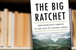 The Big Ratchet: How Humanity Thrives in the Face of Natural Crisis by Ruth DeFries