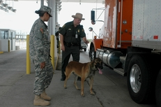 A U.S. Army Soldier of the Texas Army National Guard and Senior Patrol Agent Chad Wamsley, U.S. Border Patrol, observe as Ricky I, a Belgian Malinois detection dog, checks a tractor-trailer truck for indications of drugs or concealed people at the U.S. Border Patrol's Interstate 35 checkpoint north of Laredo, Texas, July 14, 2006.